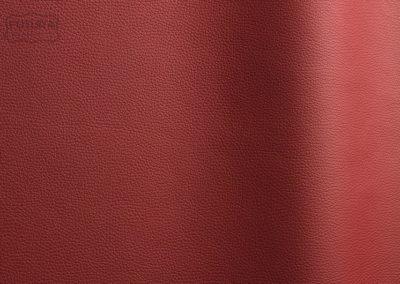 Bizon - Colour 165