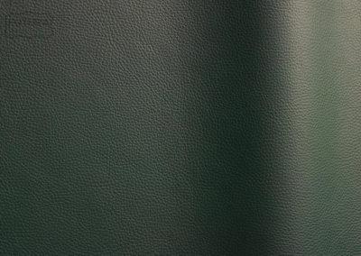 Bizon - Colour 454