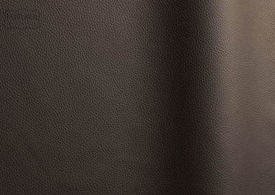 Bizon - Colour 458