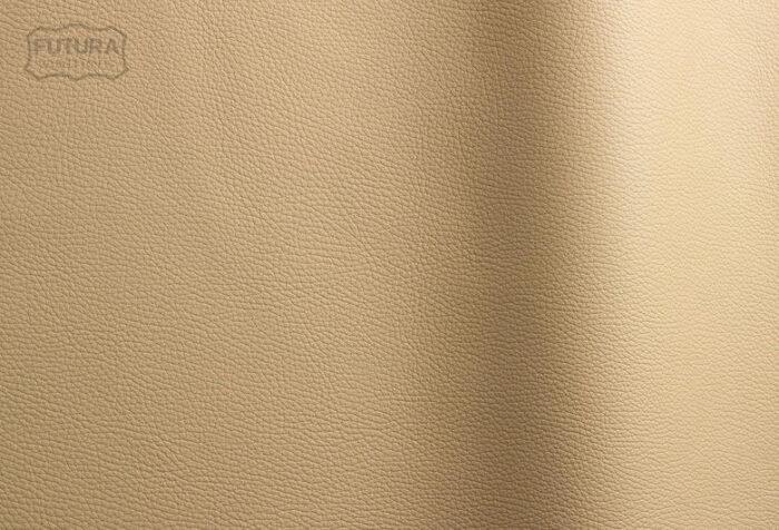 Bizon - Colour 481