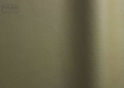 Bizon - Colour 8371