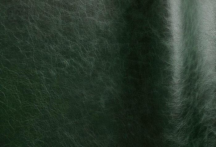 Pista - Foresta