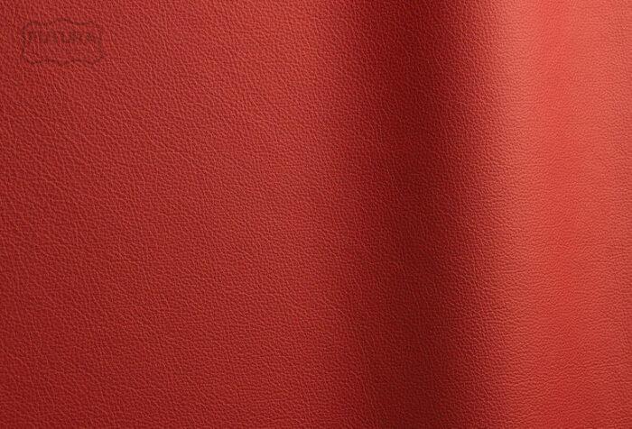 Sierra - Colour 304