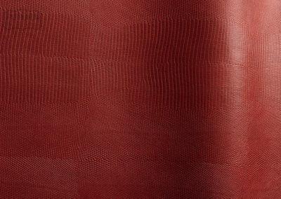 Alteyus - Colour 52162
