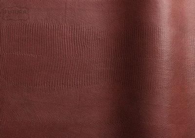 Alteyus - Colour 52184