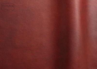 Reale - Colour 11044