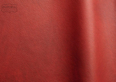 Reale - Colour 11050