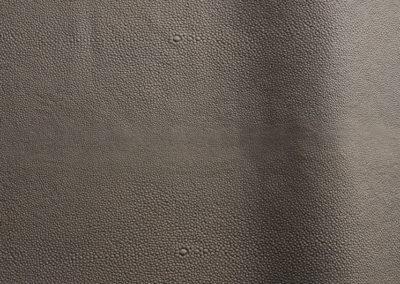 Silk Stingray - Colour 0855