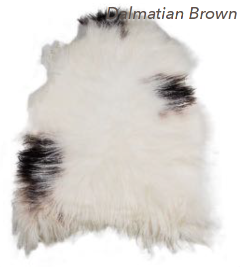 Icelandic Sheepskin - Dalmatian Brown