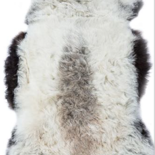 Icelandic Shorn - Natrual Dark Grey Edges