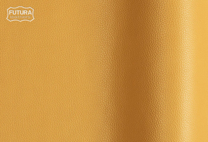 Ram - Colour 081