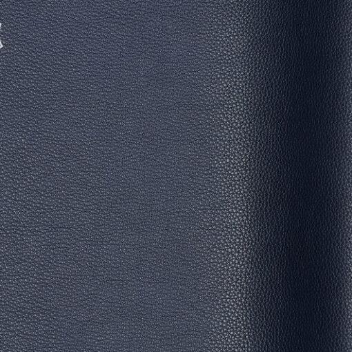 Ram - Colour 10464