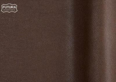 Ram - Colour 250